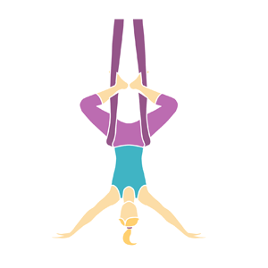 Level 1 Hammock Aerialist Fitness Training
